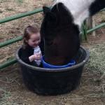 Elite Equine Vet Kansas Kids and Horses