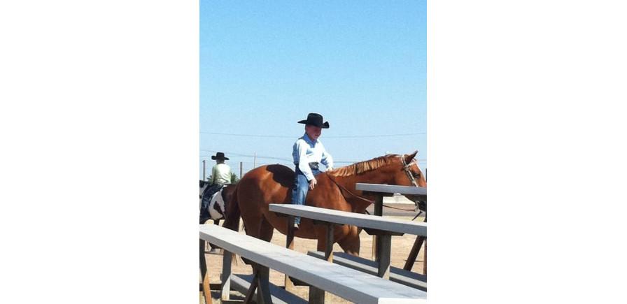 Elite Equine Veterinary Services Equine Chiropractic