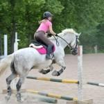 Elite-Equine-Vet3